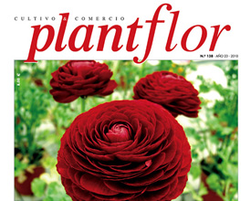 Design and layout Plantflor magazine